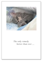 Sleeping Cat Under Covers Card